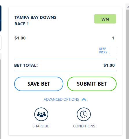 Kentucky derby betting - betslip
