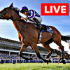 live horse racing betting